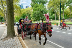 Horse carriage  at Central Park in New York City Royalty Free Stock Photo