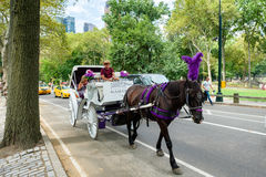 Horse carriage  at Central Park in New York City Royalty Free Stock Photos