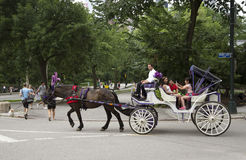 Horse and carriage in Central Park New York USA. Young passengers on a horse and carriage ride in Central Park New York USA taking selfie photo royalty free stock images