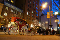 Horse and Carriage, Chicago Royalty Free Stock Photography