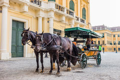 HORSE CARRIAGE chonbrunn Palace in Vienna. HORSE CARRIAGE Schonbrunn Palace model in Vienna day time Royalty Free Stock Photography