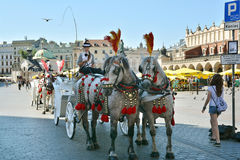 Horse carriage for city sightseeing tours in Krakow Stock Image