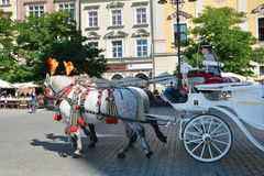 Horse carriage for city sightseeing tours in Krakow Royalty Free Stock Photo