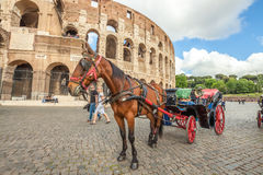 Horse carriage at Colosseo Stock Image