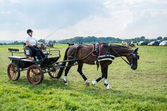 Horse Carriage Competition Royalty Free Stock Image