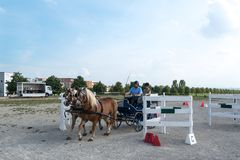 Horse Carriage Competition Royalty Free Stock Photo