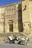 Horse carriage. Cordoba. Andalusia, Spain. Royalty Free Stock Images