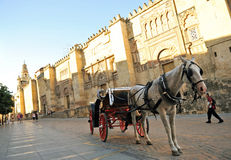Horse carriage at the Cordoba Mosque, Andalusia, Spain Stock Photos