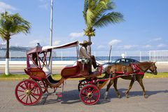 Horse carriage in Cozumel promenade, Mexico Royalty Free Stock Image