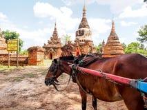 Horse carriage and Daw Gyan Pagoda complex, Ava, Myanmar 1 Stock Photos