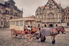 The horse carriage Stock Images