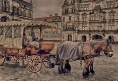 The horse carriage Royalty Free Stock Image