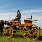 Horse carriage with driver. Green field & blue sky - horse carriage with driver Stock Photo