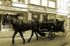 Horse carriage driving Royalty Free Stock Photography