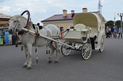 Horse carriage. Entertainment for the tourists in Veliky Novgorod Stock Photos