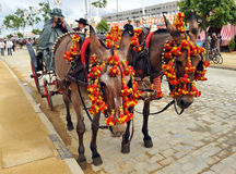 Horse carriage,  Fair in Seville, Andalusia, Spain Royalty Free Stock Photos