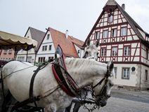 Horse Carriage and Frame Houses Stock Photography