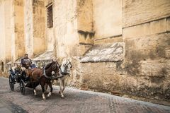 Horse carriage in front of the cathedral in Cordoba, Spain. royalty free stock photos