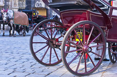 Horse carriage in front of saint Stephen's cathedral at downtown of Vienna Royalty Free Stock Photo