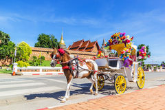 Horse carriage front of Wat Phrathat Lampang temple Stock Image
