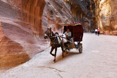 Horse carriage in a gorge, Siq canyon in Petra Royalty Free Stock Images