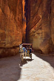 Horse carriage in a gorge, Siq canyon in Petra Royalty Free Stock Photo