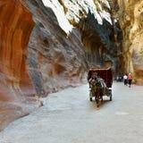 Horse carriage in a gorge, Siq canyon in Petra Stock Photos