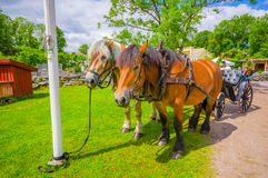 Horse carriage in Gunnebo House, Gothemburg Royalty Free Stock Photos
