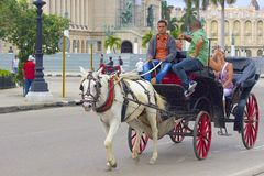 Horse carriage in Havana, Cuba Stock Images