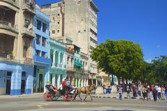 Horse carriage in Havana, Cuba Royalty Free Stock Photo