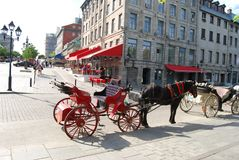 Horse Carriage In Montreal Royalty Free Stock Photos