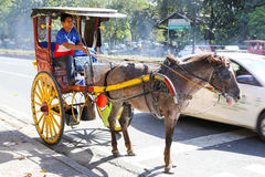 Horse with carriage in Intramuros Stock Image
