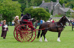 Horse and carriage judging Stock Photos