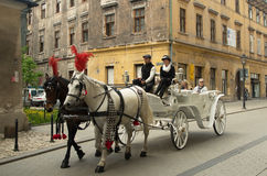 Horse carriage in Krakow. Stock Photography