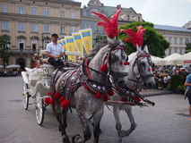 Horse and carriage in Krakow. Krakow, Poland - June 04, 2016: Horse and carriage in Krakow's main square in the old town Royalty Free Stock Images