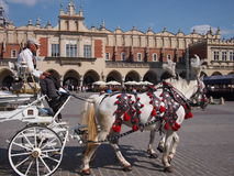 Horse and carriage in Krakow. Krakow, Poland - June 04, 2016: Horse and carriage in Krakow's main square in the old town Stock Photo