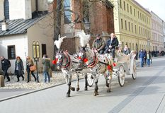 Horse carriage in Krakow Royalty Free Stock Photography