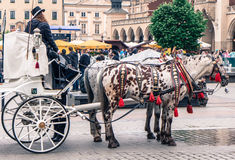 Horse carriage at Krakow, Slovakia stock photography