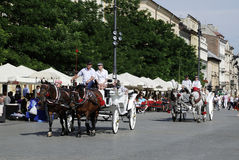 Horse carriage on the main market of Krakow Royalty Free Stock Photo