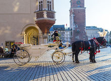 Horse and carriage at the Main Square in Krakow Stock Image