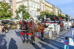 Horse and carriage at the Main Square in Krakow. KRAKOW, POLAND - OCT 7, 2014: Horse and carriage at the Main Square in Krakow. Taking a horse ride in a carriage royalty free stock photos