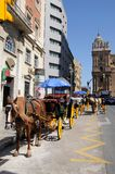 Horse and carriage, Malaga, Spain. Stock Photos