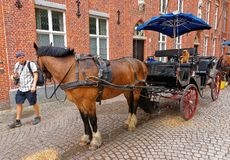 Horse carriage in medieval old city of Bruges. Bruges, Belgium - May 10, 2012: Horse carriage in the medieval old city of Bruges, Belgium. Tourist on the Royalty Free Stock Photo