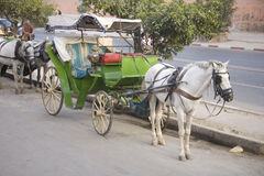 Horse and carriage Morocco Royalty Free Stock Images