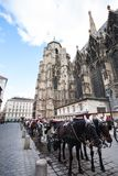 Horse carriage near St. Stephan Cathedral Royalty Free Stock Photos