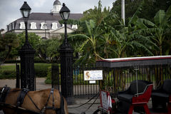 Horse and Carriage in New Orleans Louisiana USA Royalty Free Stock Image