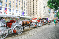 Horse Carriage, New York City Royalty Free Stock Photography