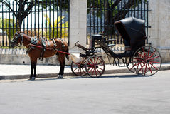 Horse and Carriage, Old Havana, Cuba. Stock Photos