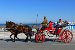 Horse carriage Stock Images