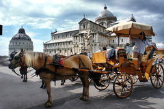 Horse Carriage in Pisa, Italy. PISA, ITALY - JUNE 24: Horse Carriage awaits next client, June 24, 2013 in Pisa, Italy. Horse Carriage is a very popular way to Stock Photos